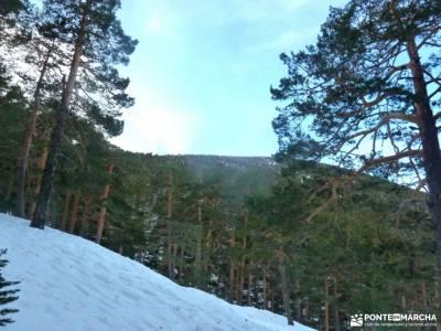 Camino Schmidt_Miradores Rosales,Vicente Aleixandre;mochilas para campamento monasterio de yuste bos